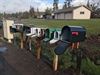 Deputies Investigate Overnight Mail Theft (Photo)