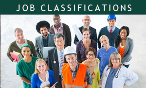 Job Classifications