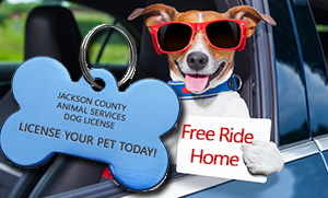 Welcome to Animal Services - Jackson County, Oregon