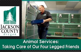 Animal Services: Taking Care of Our Four...
