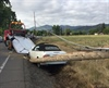 Crash Downs Power Lines, Driver Cited (Photo)