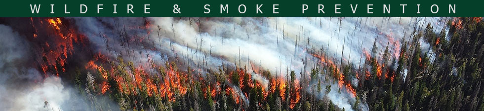 Wildfire & Smoke Prevention