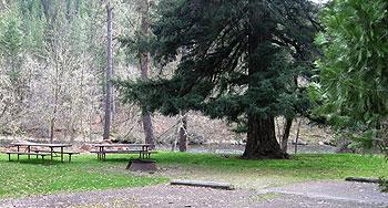 Rogue Elk Park
